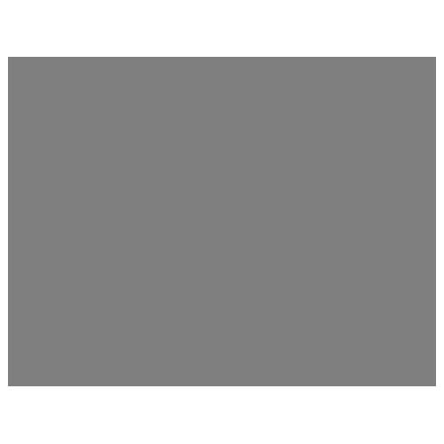 membership logo - aae